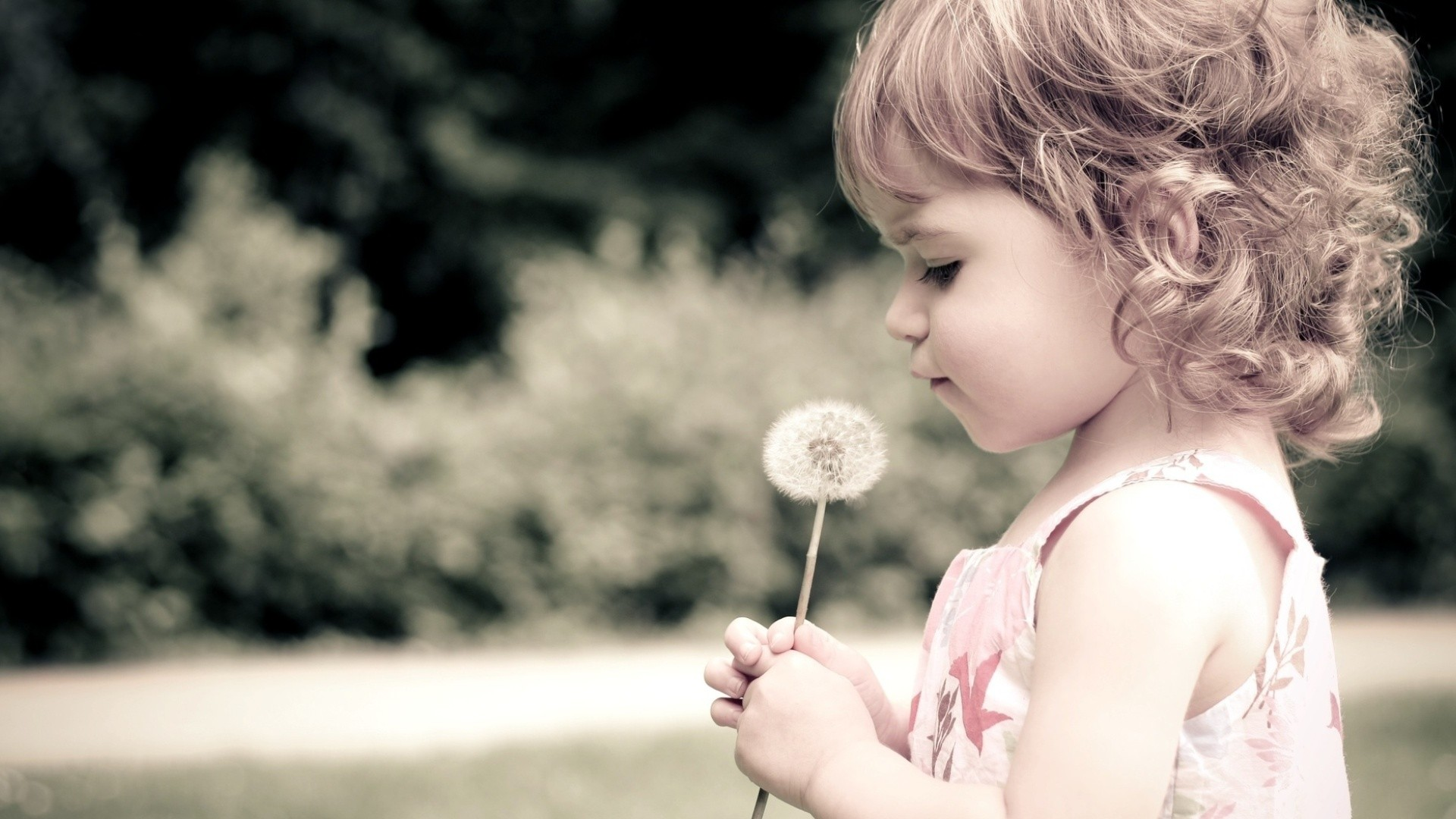 cute-baby-with-dandelion-1920×1080-wallpaper-wp3804276