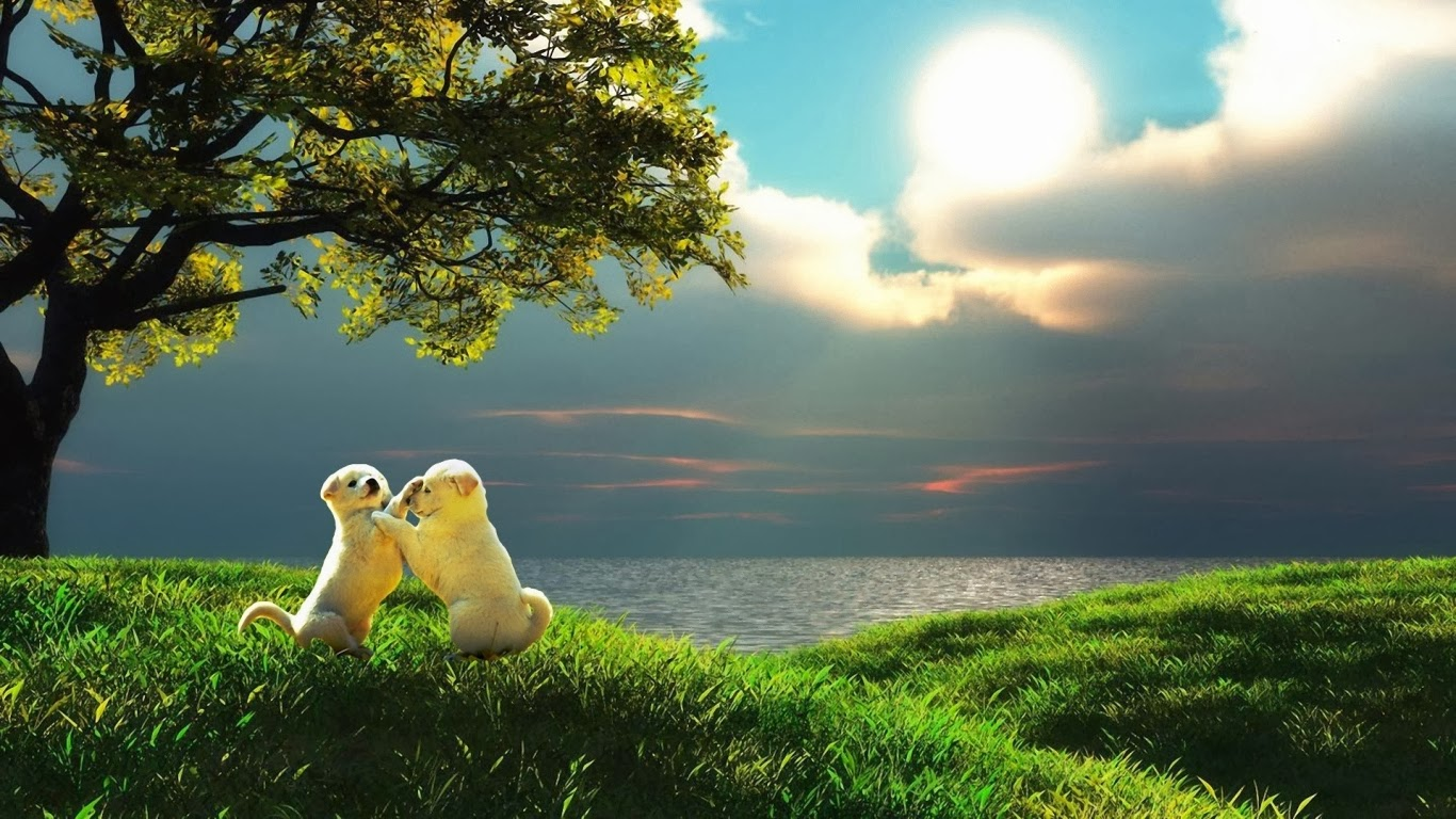 cute-puppies-in-love-hd-free-download-love-wallpaper-wp3604482