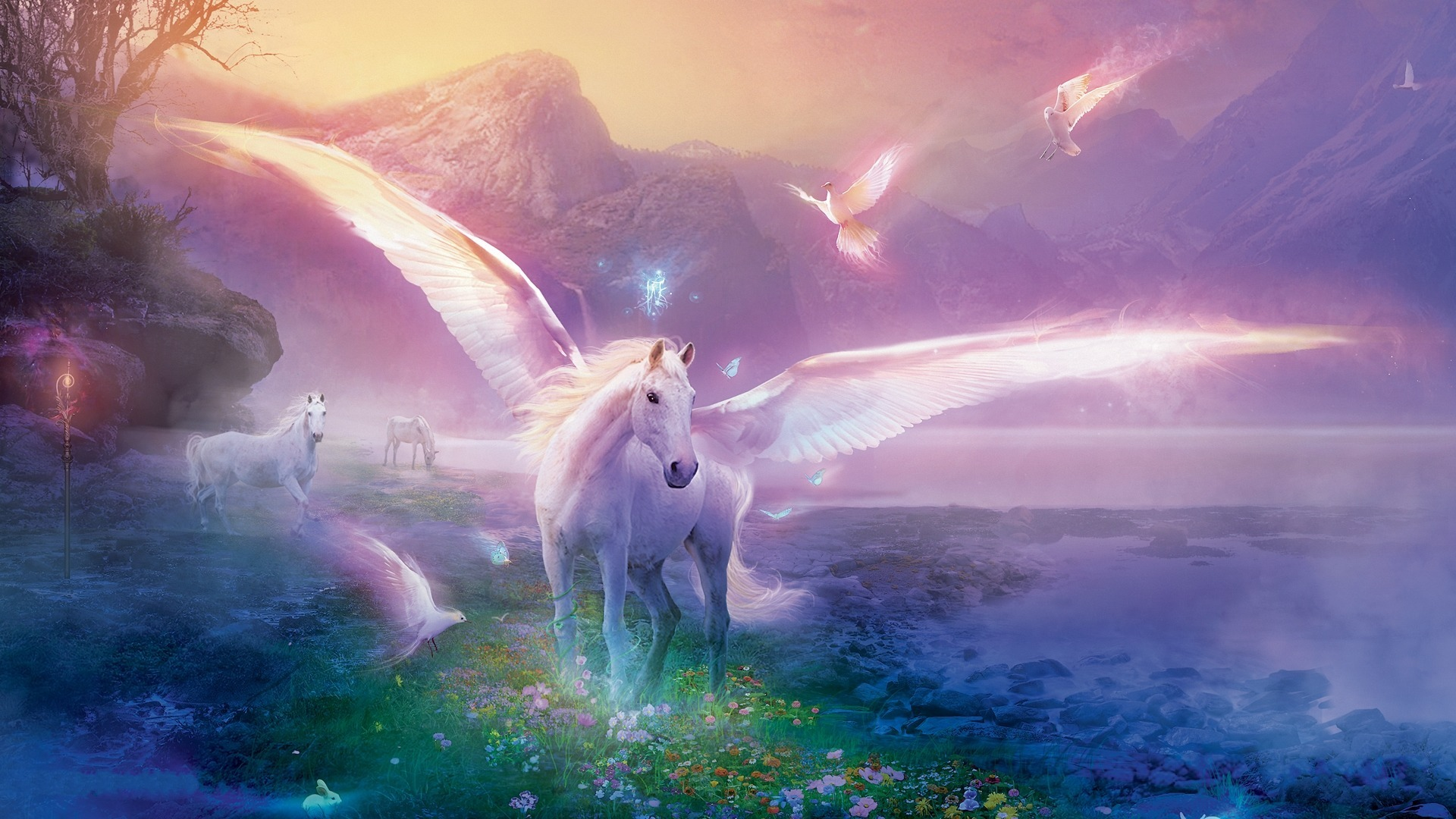 fantasy-animals-The-Images-of-unicorn-1920x1080-winged-white-horse-HD-wallpaper-wpc5804710