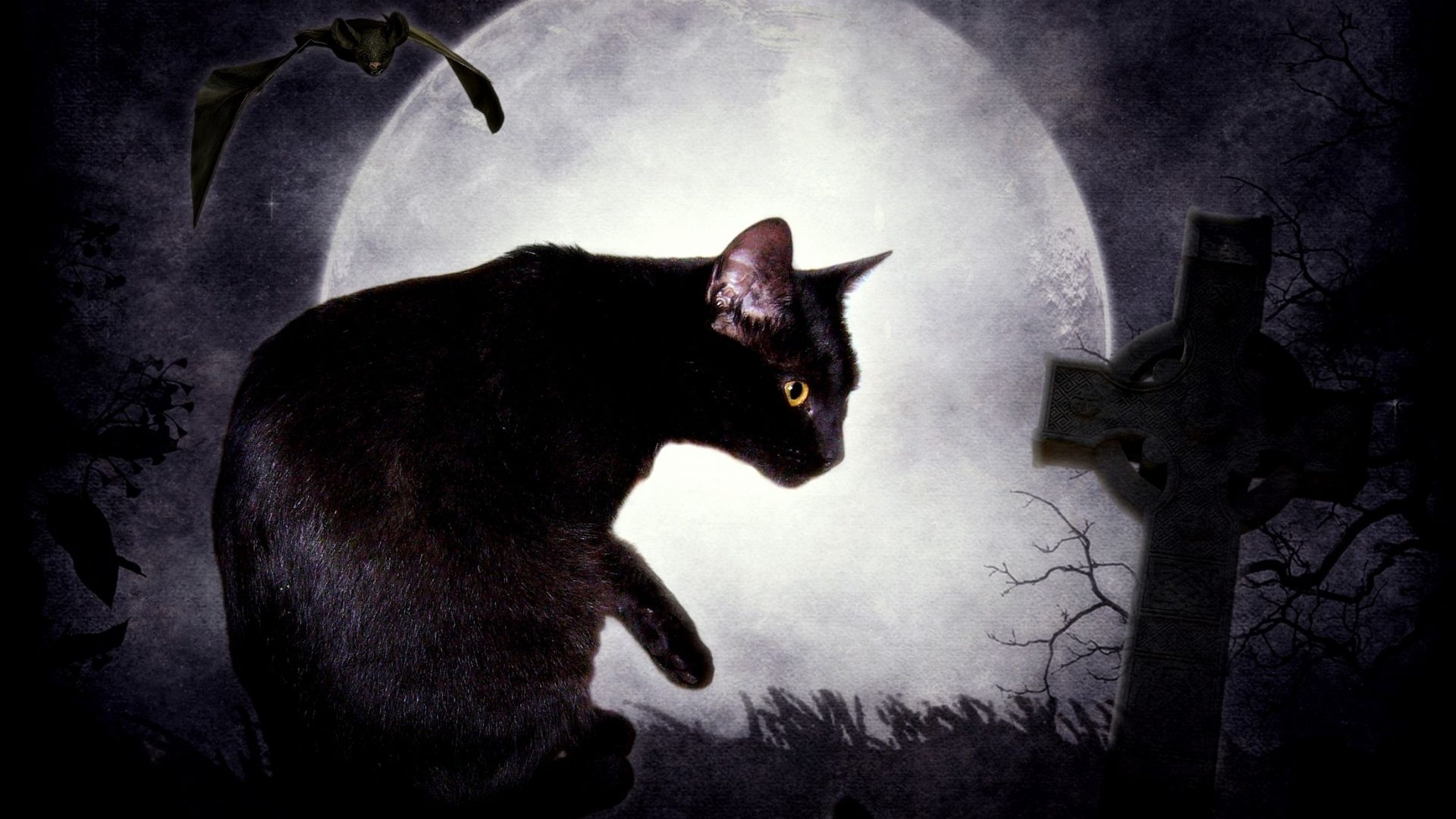 fantasy-dark-cats-Black-Cat-fantasy-art-digital-art-cemetery-Edgar-Allan-Poe-bats-The-Black-wallpaper-wp3805214