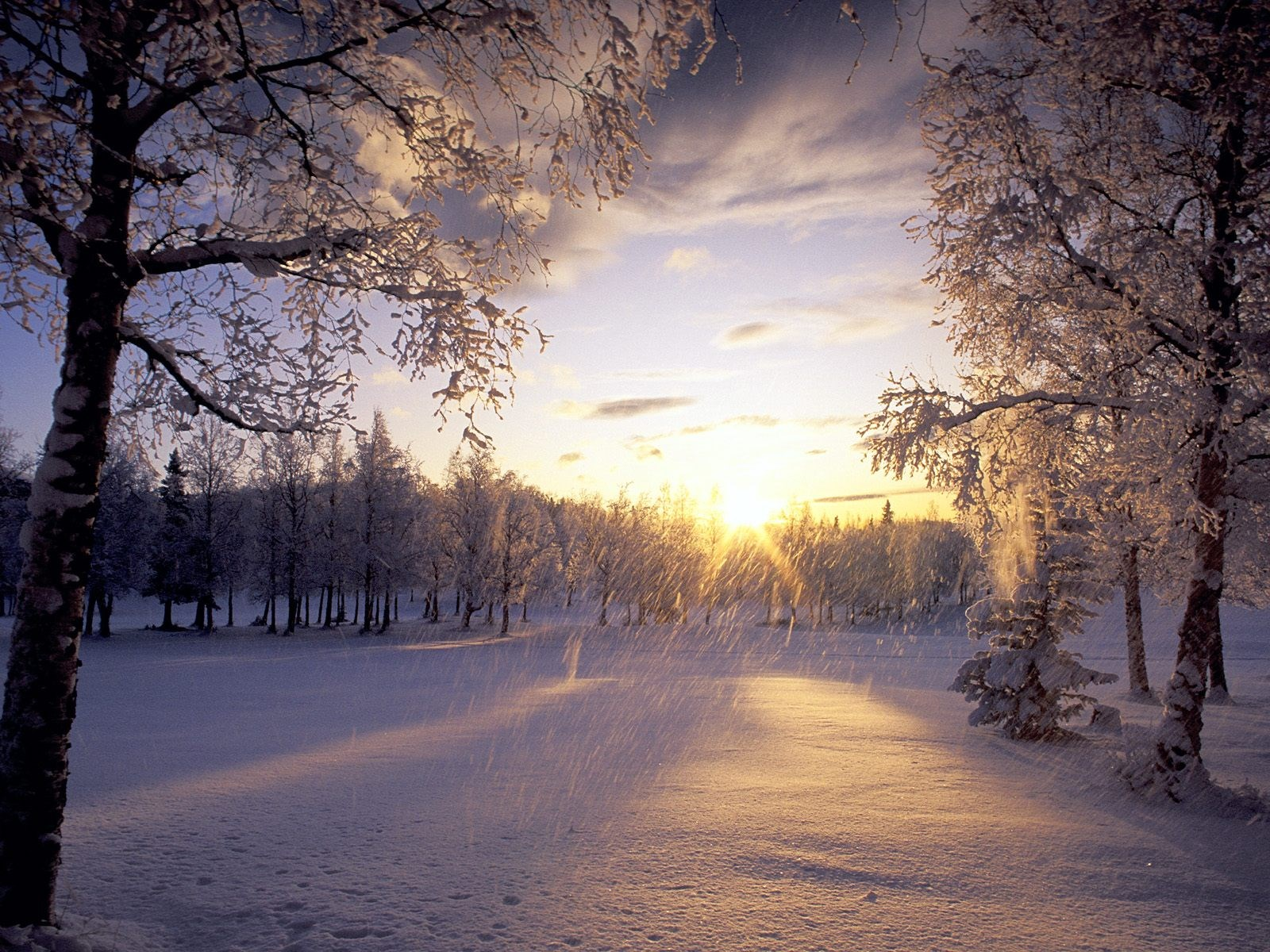 winter-Full-HD-Pictures-wallpaper-wpc90010702
