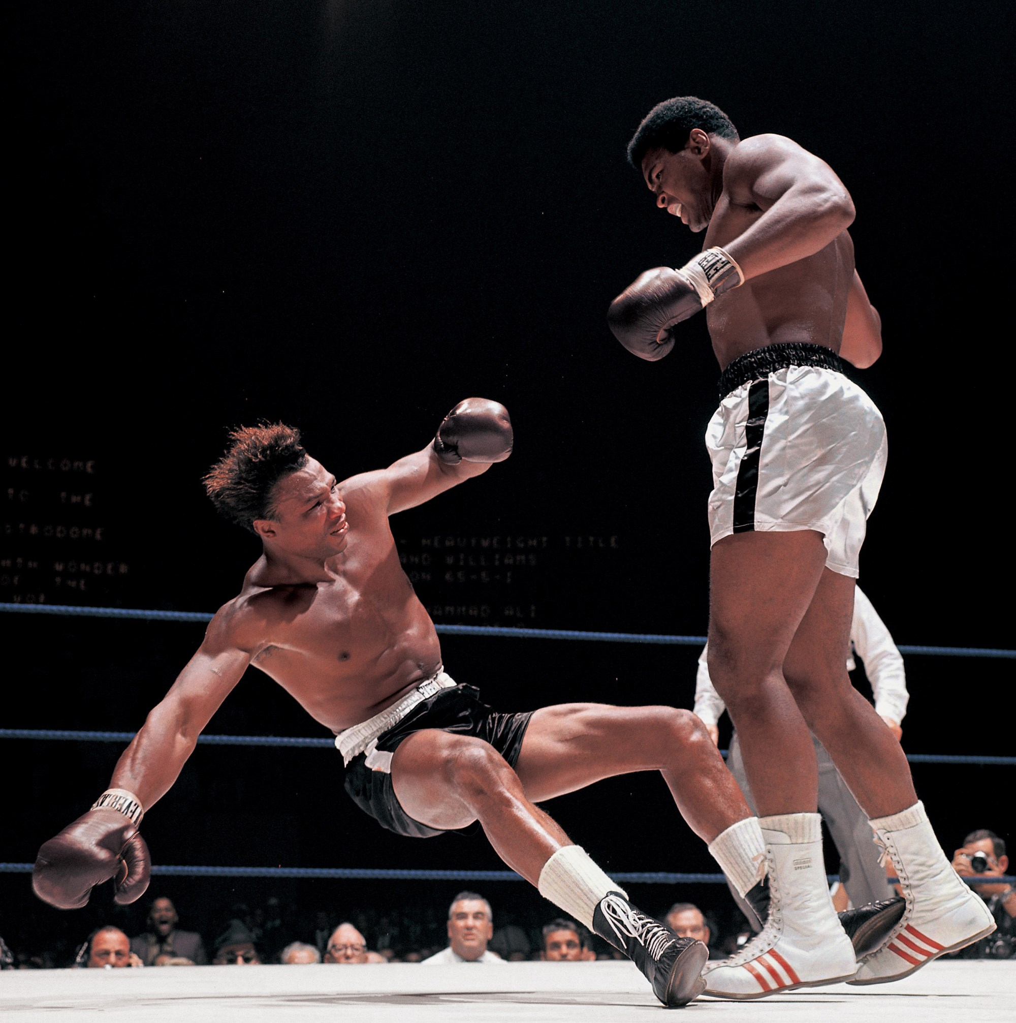 x-px-muhammad-ali-1080p-high-quality-by-Beatrice-Edwards-wallpaper-wp3801019